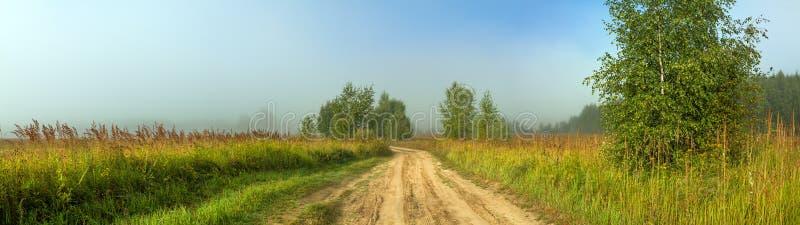 Wiejska jesień krajobrazu panorama z drogą, mgła, pole, drzewa obraz royalty free