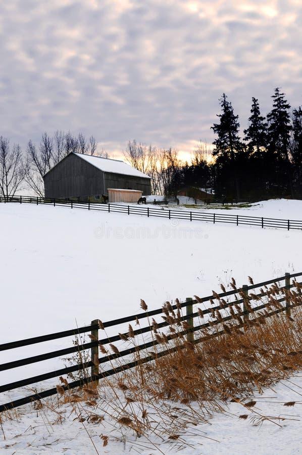 wiejska krajobrazowa zimy. obraz royalty free