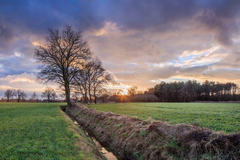 Wiejska sceneria, pole z drzewami blisko przykopu i kolorowy zmierzch z dramatycznymi chmurami, Weelde, Belgia zdjęcia royalty free