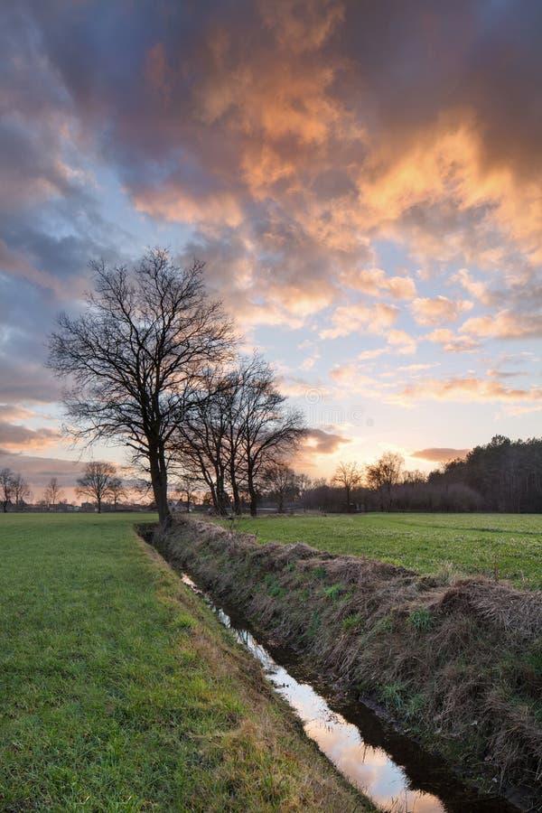 Wiejska sceneria, pole z drzewami blisko przykopu i kolorowy zmierzch z dramatycznymi chmurami, Weelde, Belgia obraz stock