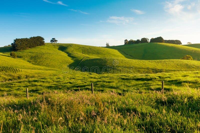 Wiejski Australia krajobraz zdjęcia stock