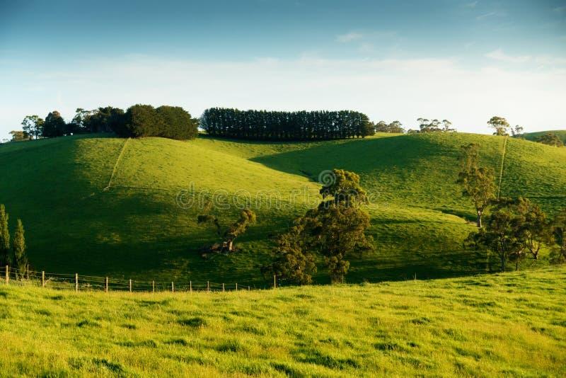 Wiejski Australia krajobraz obraz royalty free