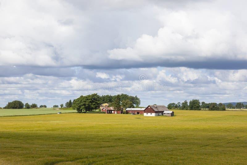 Wiejski gospodarstwo rolne krajobraz zdjęcia royalty free