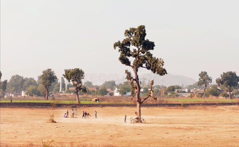 Wiejski India krajobraz Wioska dzieciaki bawić się krykieta plenerowego, na boisku z jeden drzewnym terenem zdjęcie royalty free