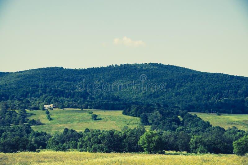 Wiejski krajobraz w Ukraina zdjęcie royalty free