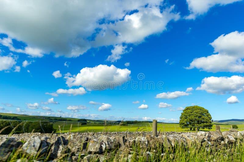 Wiejski krajobraz w Yorkshire dolinach, Anglia, UK zdjęcia stock
