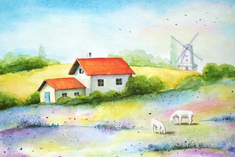 Wiejski krajobraz z polami, gospodarstwo rolne domem, sheeps i wiatraczkiem, royalty ilustracja