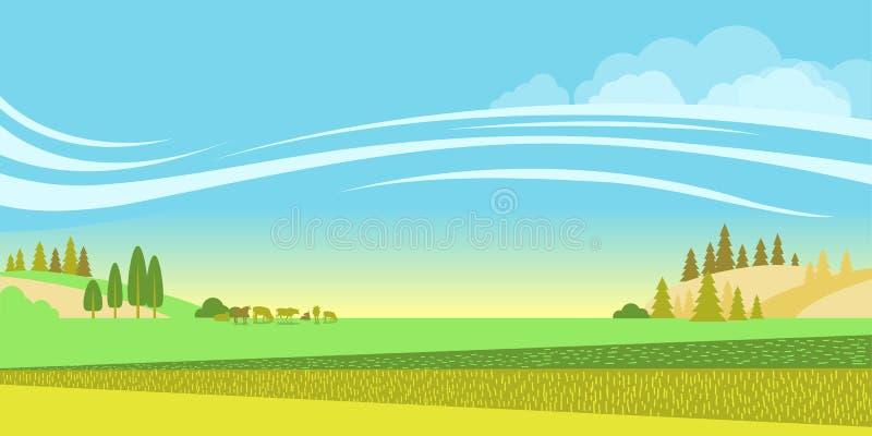 Wiejski krajobraz z polami i stado krowy Wektorowy natury backg royalty ilustracja