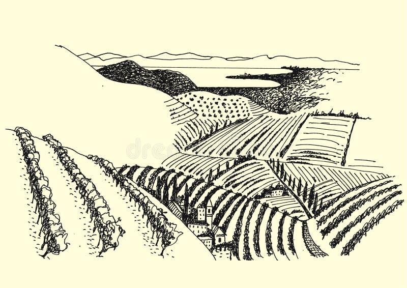 Wiejski krajobrazowy atramentu pióra obrazek - wektor ilustracji