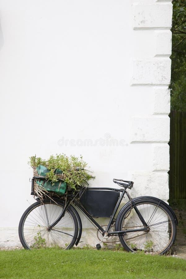 Wiejski rower obraz royalty free