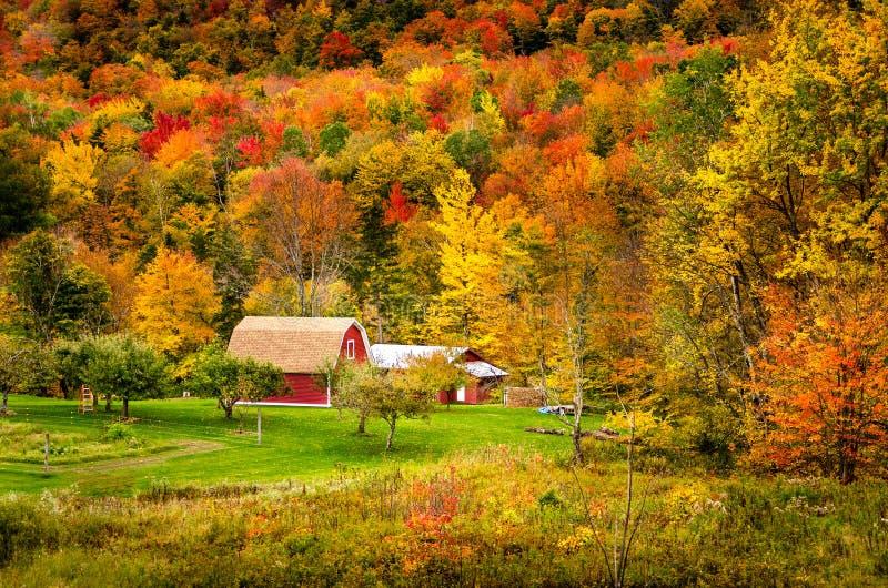 Wiejski Vermont w jesieni zdjęcia stock