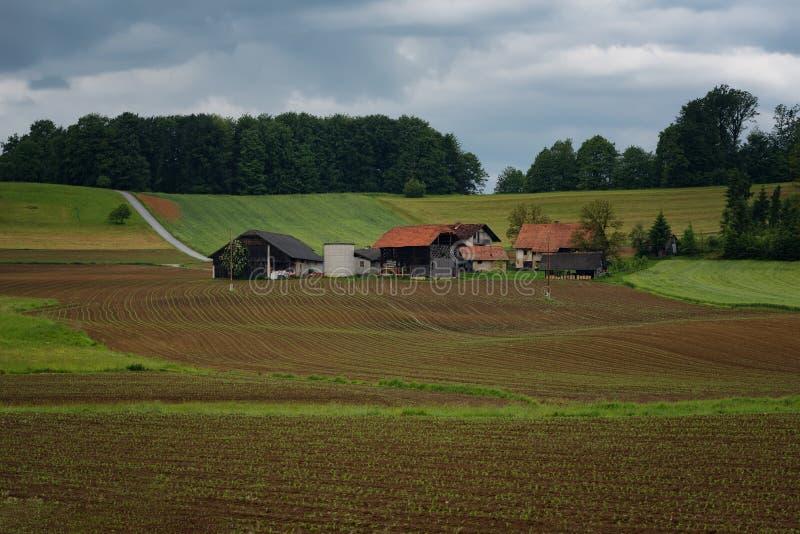 Wiejski wysokogórski krajobraz z slovenian wioską w dolinnym pobliskim Krwawiącym jeziorze przy wiosna słonecznym dniem Slovenia zdjęcie royalty free