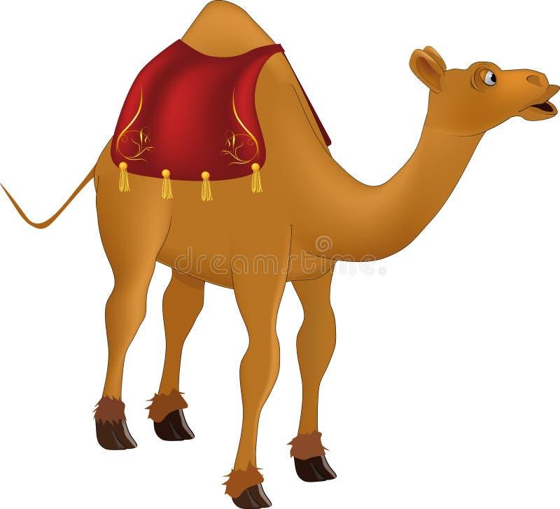 wielbłąd ilustracja wektor