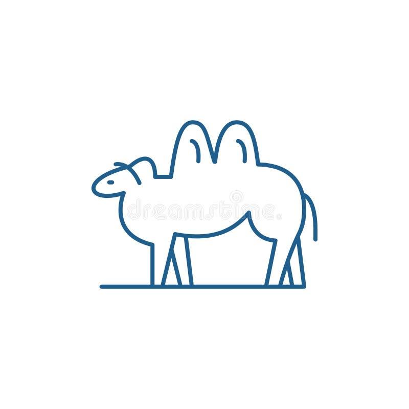 Wielbłąd ikony kreskowy pojęcie Wielbłądzi płaski wektorowy symbol, znak, kontur ilustracja ilustracja wektor