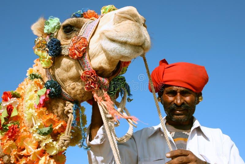 Wielbłąd na safari obrazy stock