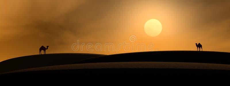 wielbłąd pustynia ilustracji