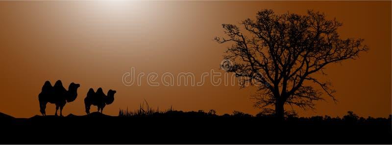 wielbłąd pustynia ilustracja wektor
