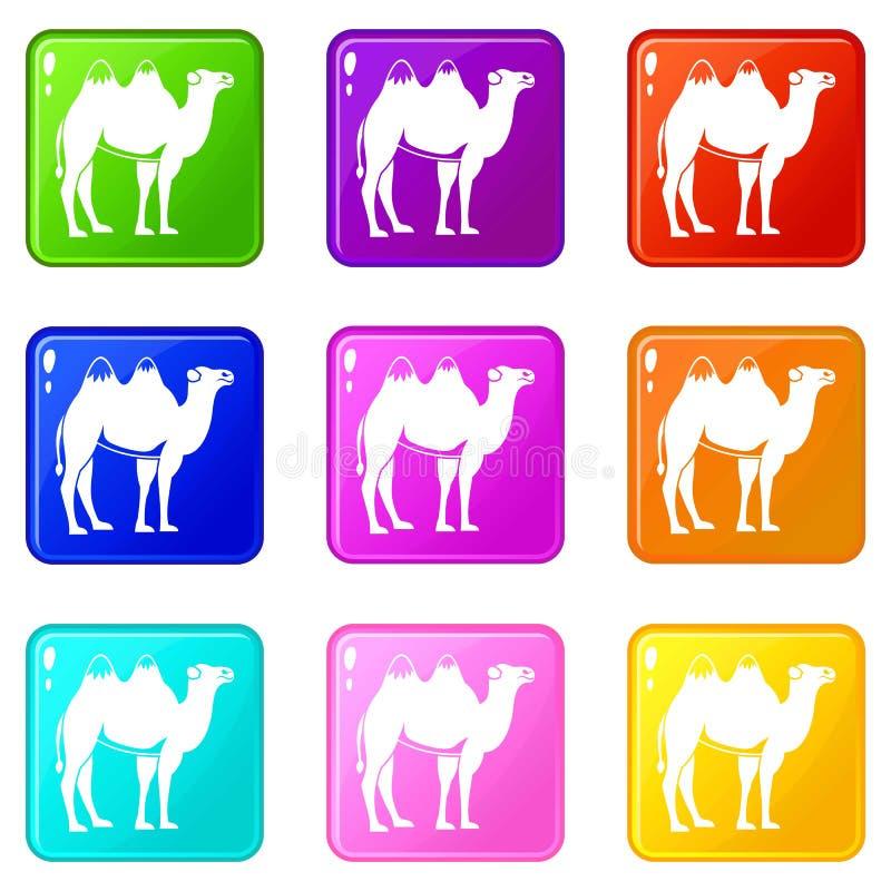 Wielbłąd ustawia 9 ilustracja wektor