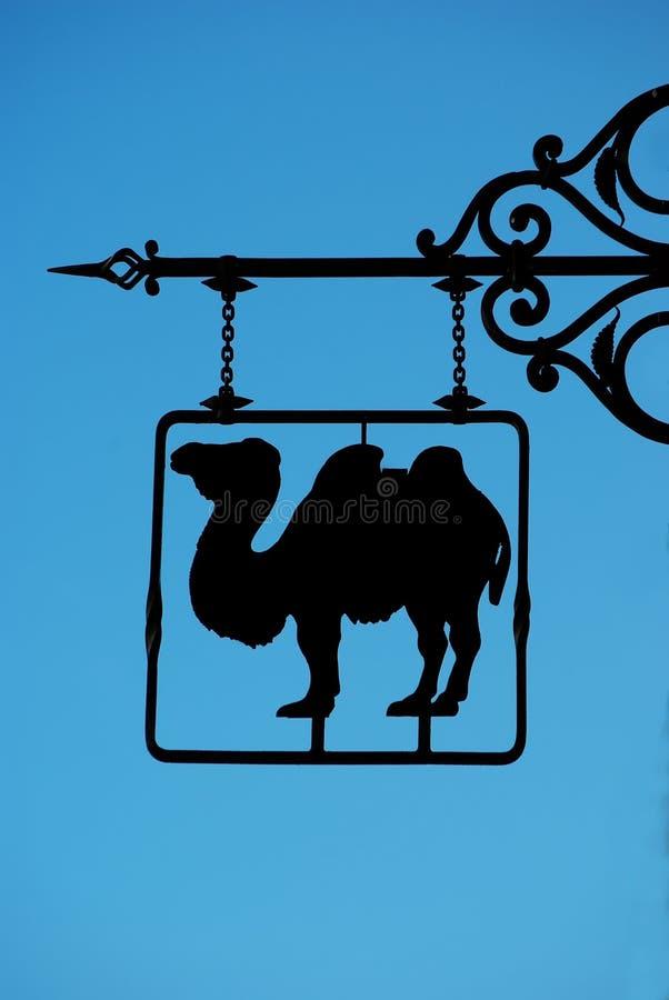 wielbłąda znak obrazy royalty free