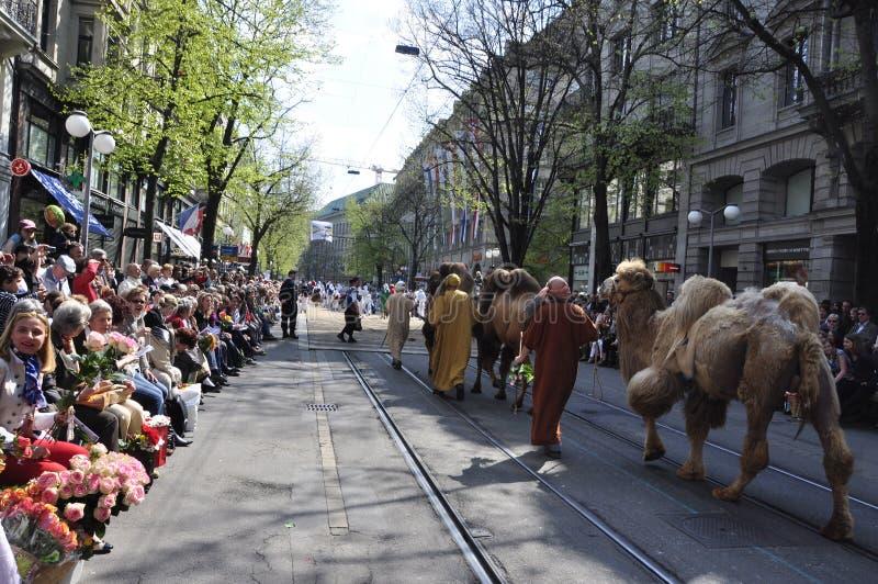 Wielbłądy chodzi przez ZÃ ¼ richs Bahnhofstreet przy tradycyjnym zdjęcie royalty free