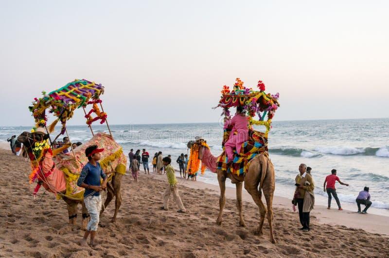wielbłądy z kolorowymi girlandami, palanquins i śmiesznymi kapeluszami z turystami w tle, fotografia royalty free