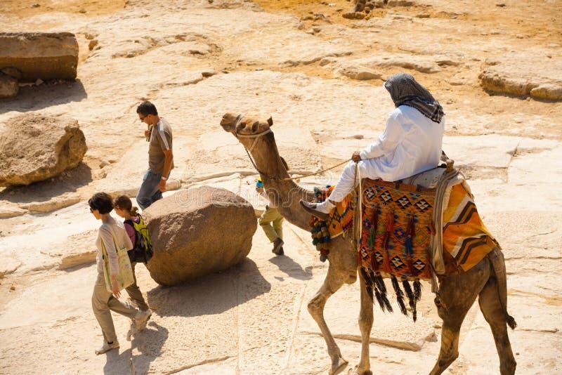 wielbłądzi przewdonik pesters turystów obraz stock