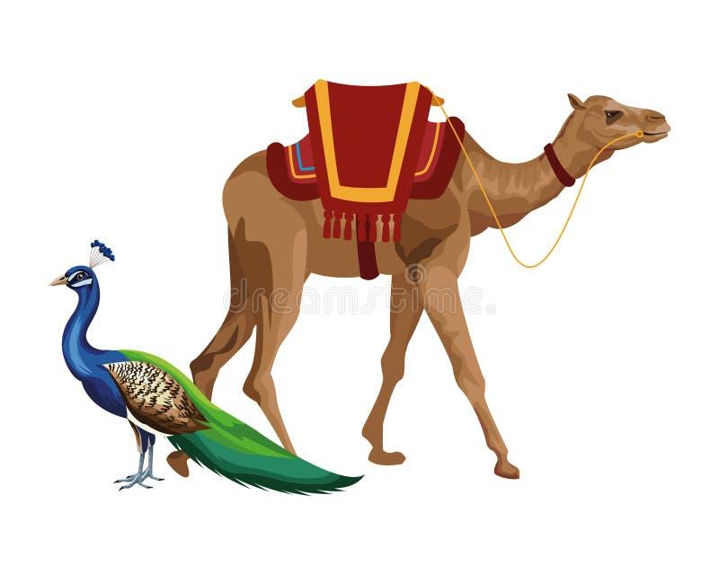 Wielbłądzia i pawia ikony kreskówka royalty ilustracja