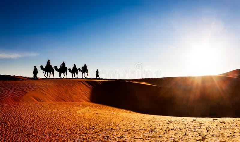 Wielbłądzia karawana na piasek diunach w pustyni obrazy royalty free
