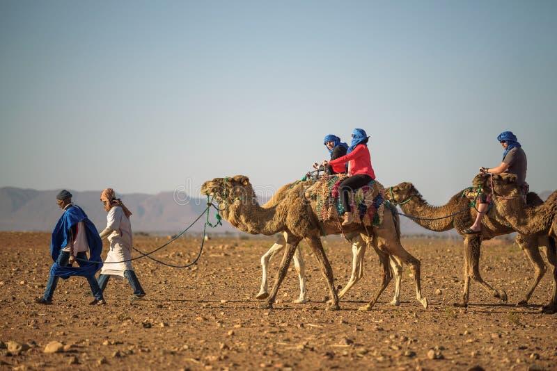 Wielbłądzia karawana z turystami iść przez sahary zdjęcia royalty free