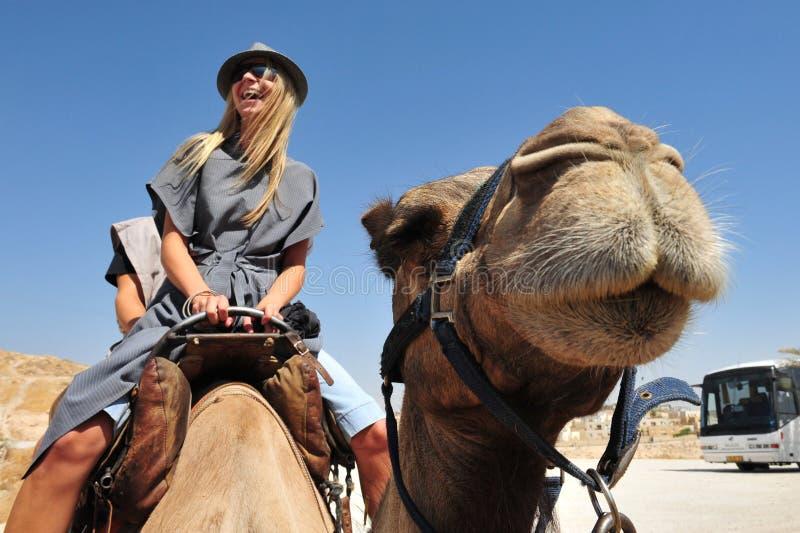 Wielbłądzia przejażdżka i Pustynne aktywność w Judejskim Des zdjęcie royalty free