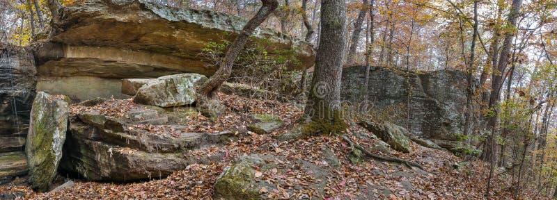 Wielcy głazy W Appalachian lesie obraz stock