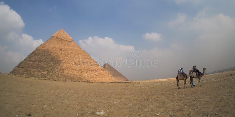 Wielcy Giza ostrosłupy w Egipt z wielbłądami, panoramiczny widok obraz stock