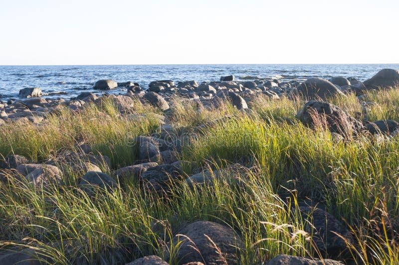 Wielcy round kamienie w zielonej trawie na brzeg morze, jezioro obraz stock