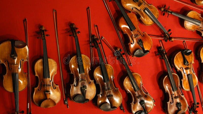 Wiele łęki na czerwonym tle i skrzypce fotografia royalty free