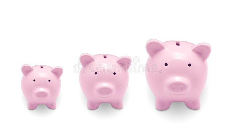 wiele banków świnka fotografia stock