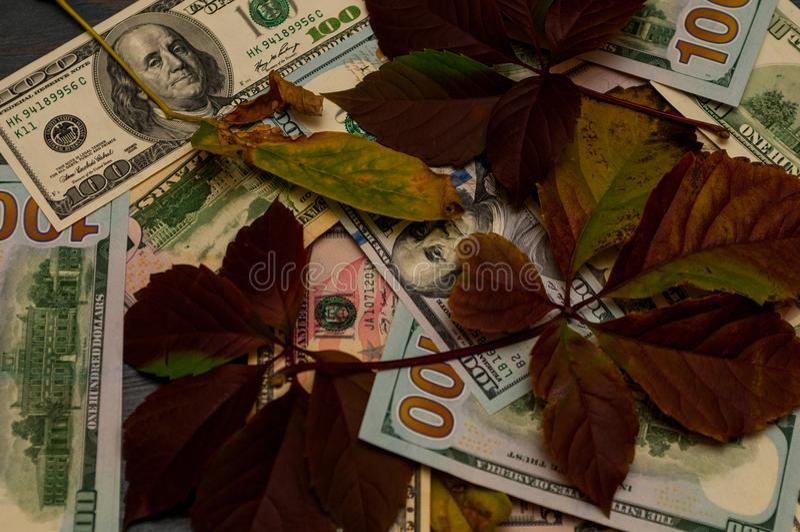 Wiele dolary, pieniężna stabilność zdjęcie royalty free
