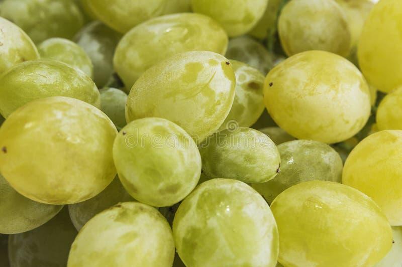 Wiele jagody biali winogrona zdjęcie royalty free