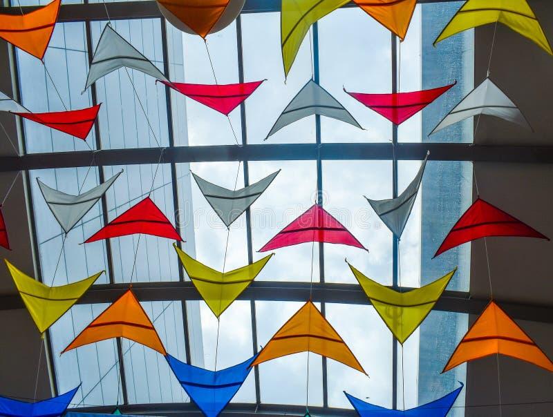 Wiele kolorowe kanie przeciw szkło dachowi obraz royalty free
