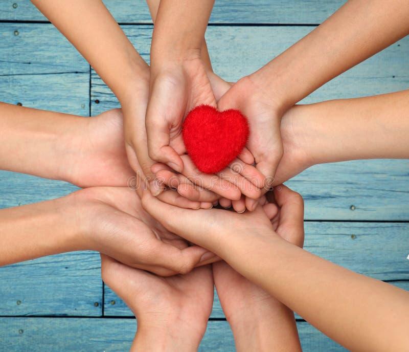 Wiele ludzie ręk trzyma czerwonego serce wręcza mienie kierową czerwień obraz royalty free