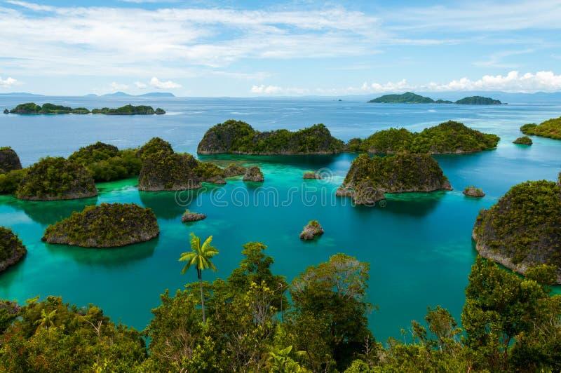 Wiele małe zielone wyspy należy Fama wyspa zdjęcia stock