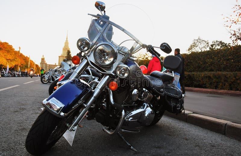 Wiele motocykli/lów stojak z rzędu obraz royalty free