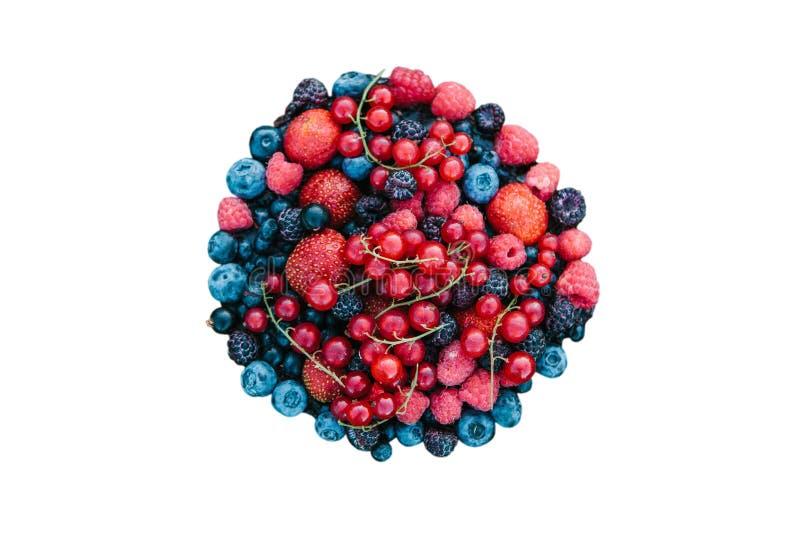Wiele różne jagody odizolowywać na białym tle obraz royalty free