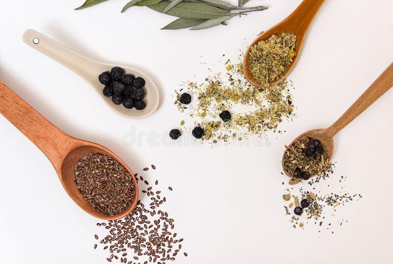 Wiele różni leczniczy ziele w drewnianych łyżkach na białym backg zdjęcie royalty free