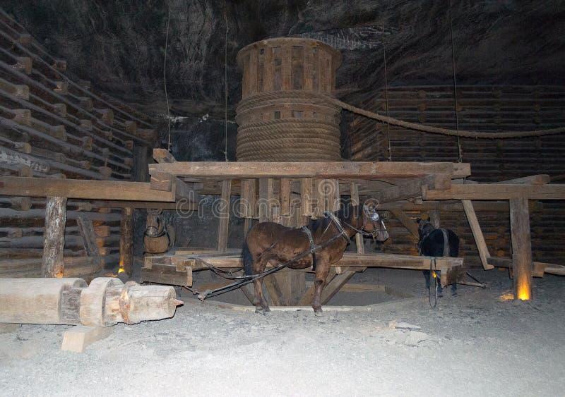 Wieliczka salt min, Polen arkivbild