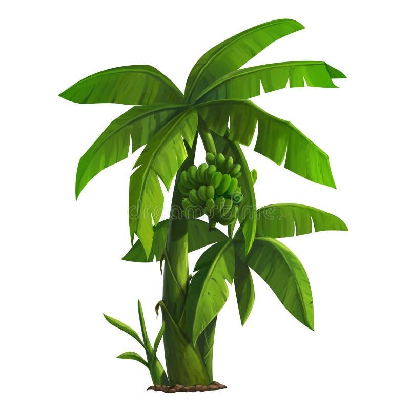 wielka bananów ' blisko green zostaw drzewa royalty ilustracja