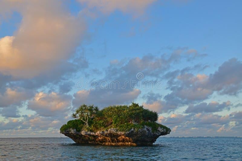 Wielka bezpartyjnik skała przed Oro zatoką z śrubowymi sosnami r na skale obrazy stock