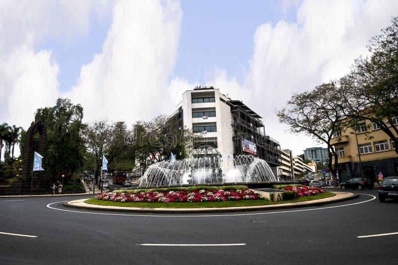 Wielka fontanna przy końcówką Drzewne Prążkowane Główne zakupy ulicy w Funchal maderze Portugalia zdjęcie stock