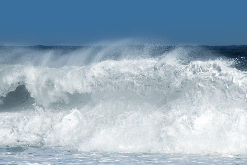 Wielka Potężna ocean fala zdjęcie royalty free