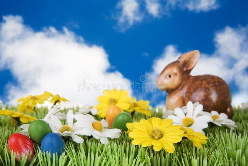 Wielkanoc królika łąka fotografia stock