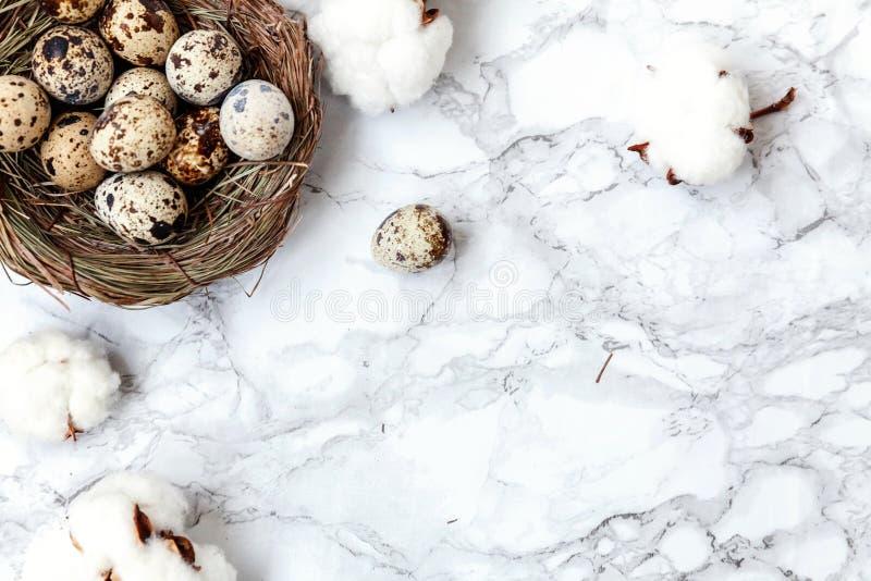 Wielkanocna dekoracja z jajkiem w gniazdeczku i bawełna na bielu wykładamy marmurem tło obraz stock